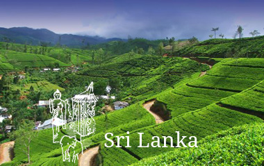 sri lanka vacations