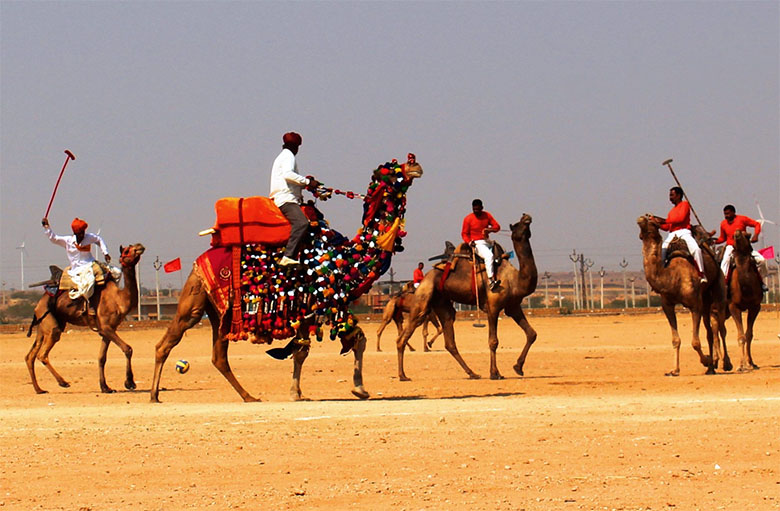 Camel-Polo-in-the-Desert