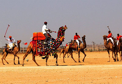 camel polo in rural rajasthan