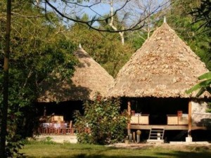 Independent UK review :The Barefoot resort features 18 environmentally sustainable, rustic cottages set against a jungle backdrop