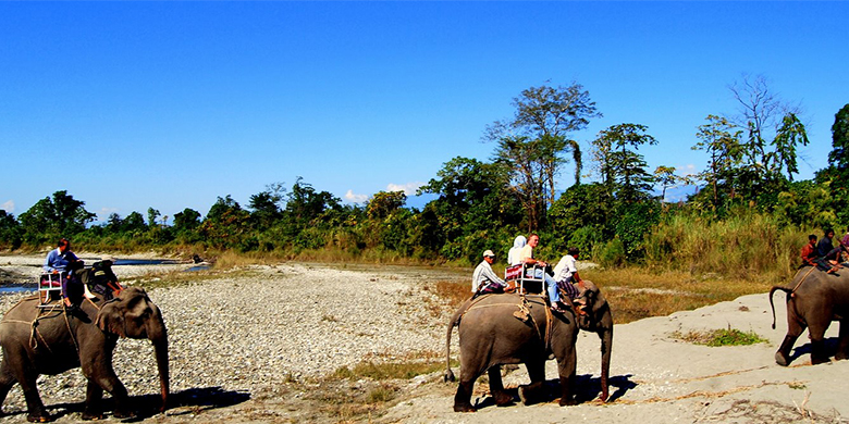 Kaziranga-National-Park