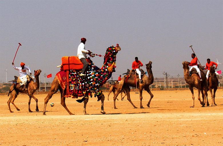 Camel-Polo-in-the-Desert