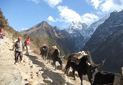 Sikkim Trekking Trail
