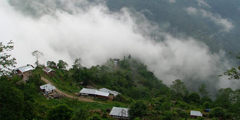 Assam-Nature
