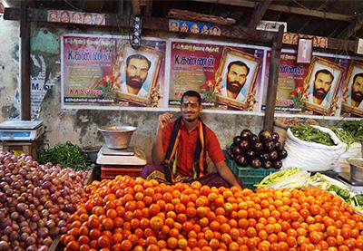 tamil quarter of pondicherry